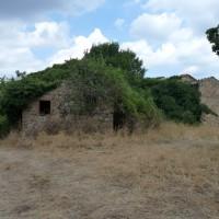 Villa Cahen e la Selva di Meana