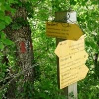 Gite ed Escursioni