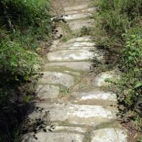 """Sulle tracce dell'antica """"Strada Basolata"""" di Cortona"""