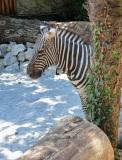 giardino-zoologico-pistoia-15.2