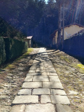 vallombrosa - percorso