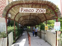 zoo falconara (1)