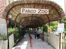 zoo falconara (1)